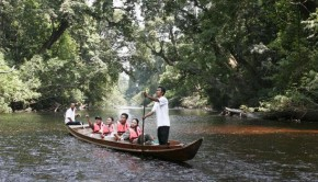 Taman Negara Day Tour – Private Day Tours